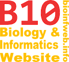 bioinfweb - Biology & Informatics Website